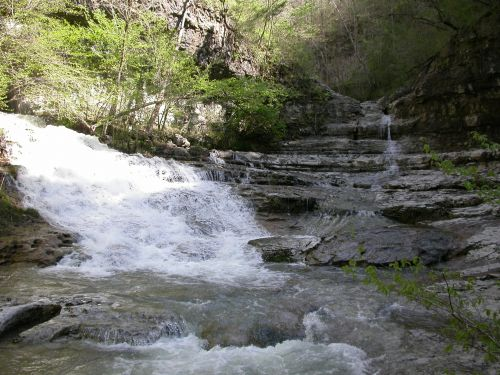 photo: Headwaters of the Paint Rock River (Turkey Creek)