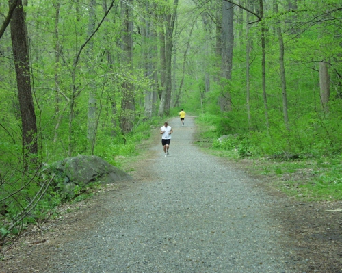 photo: Runners along the Northern Delaware Greenway Trail