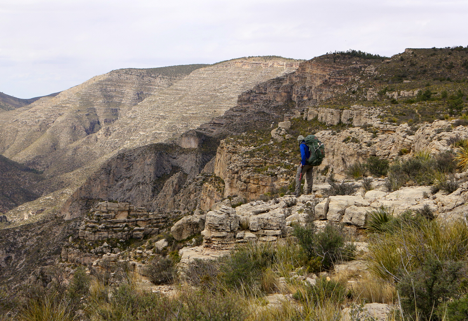 photo: Hiker along McKittrick Canyon along the GRT