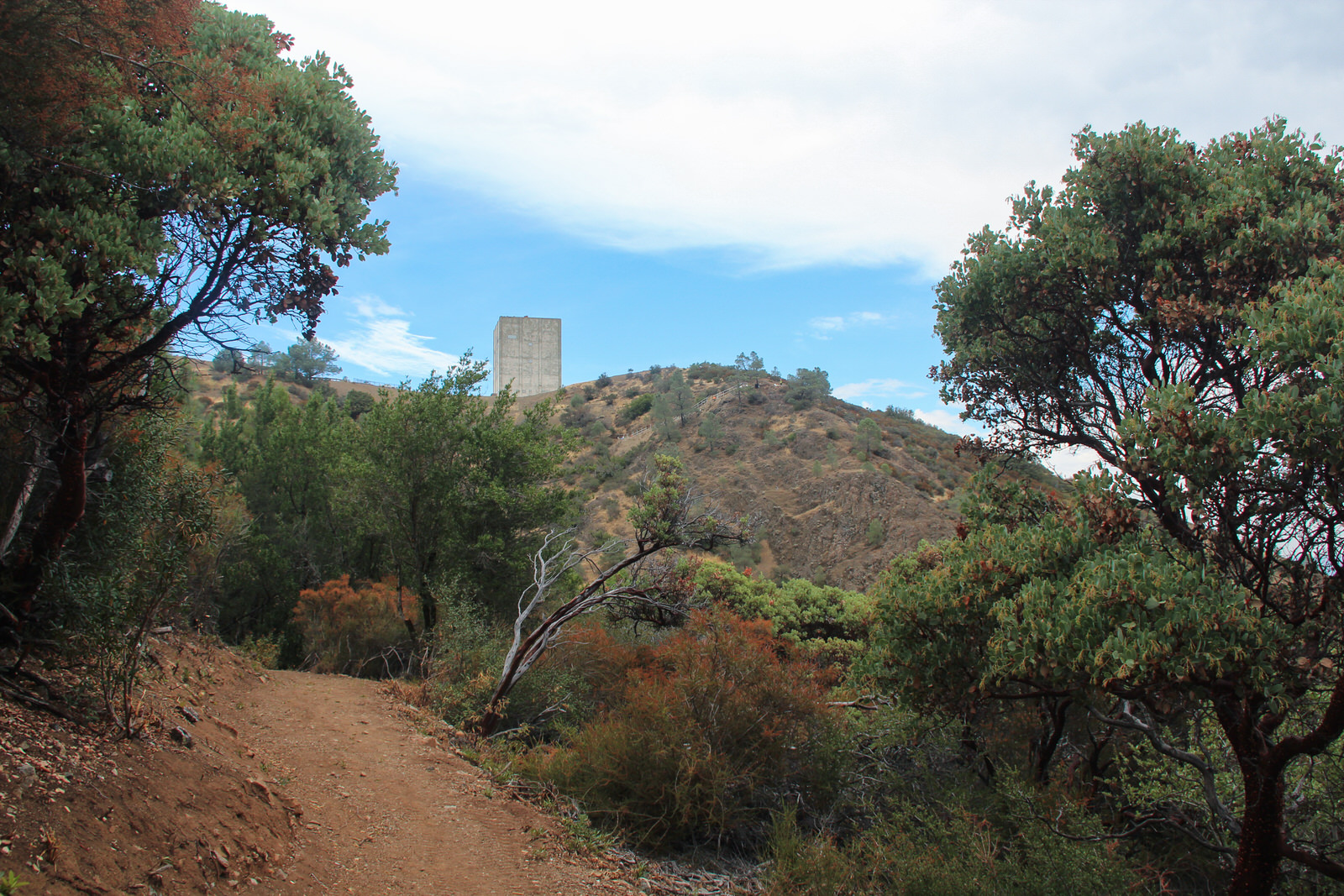 photo: Mt_Umunhum Trail_Approaching _the_Summit