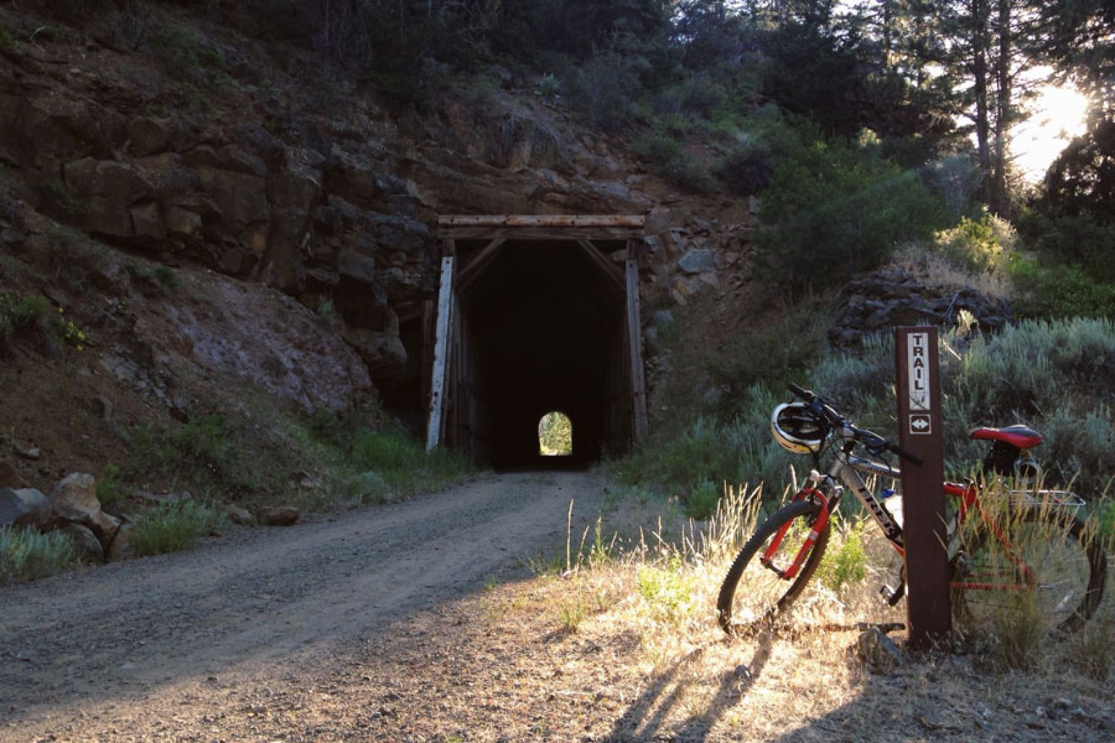 photo: Tunnel on the Bizz Johnson Trail, near Susanville, CA; photo by Dana Buzzelli, International Youth Leadership Foundation